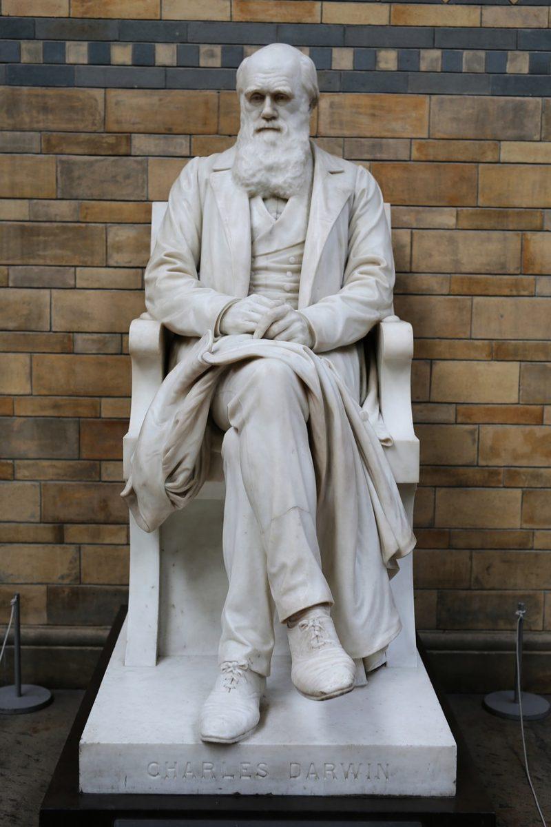 Kip Charlesa Darwina u Natural History Museum, London