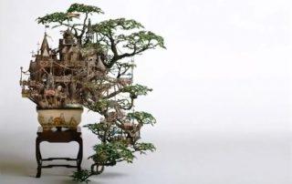 thoriumaplus-bonsai-dvorac