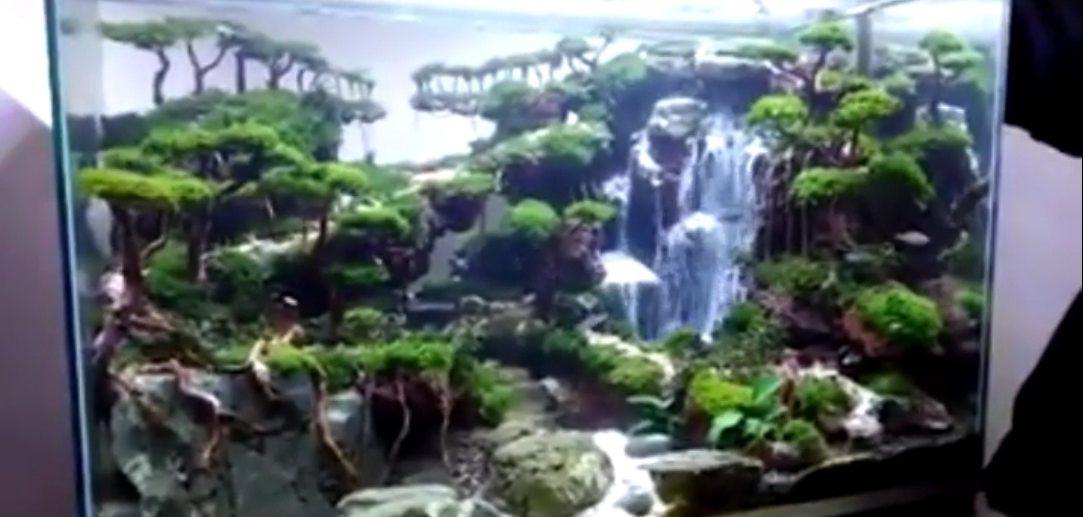Akvarij s vodopadom – GIF