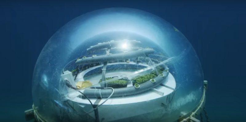 thoriumaplus-podvodna-farma