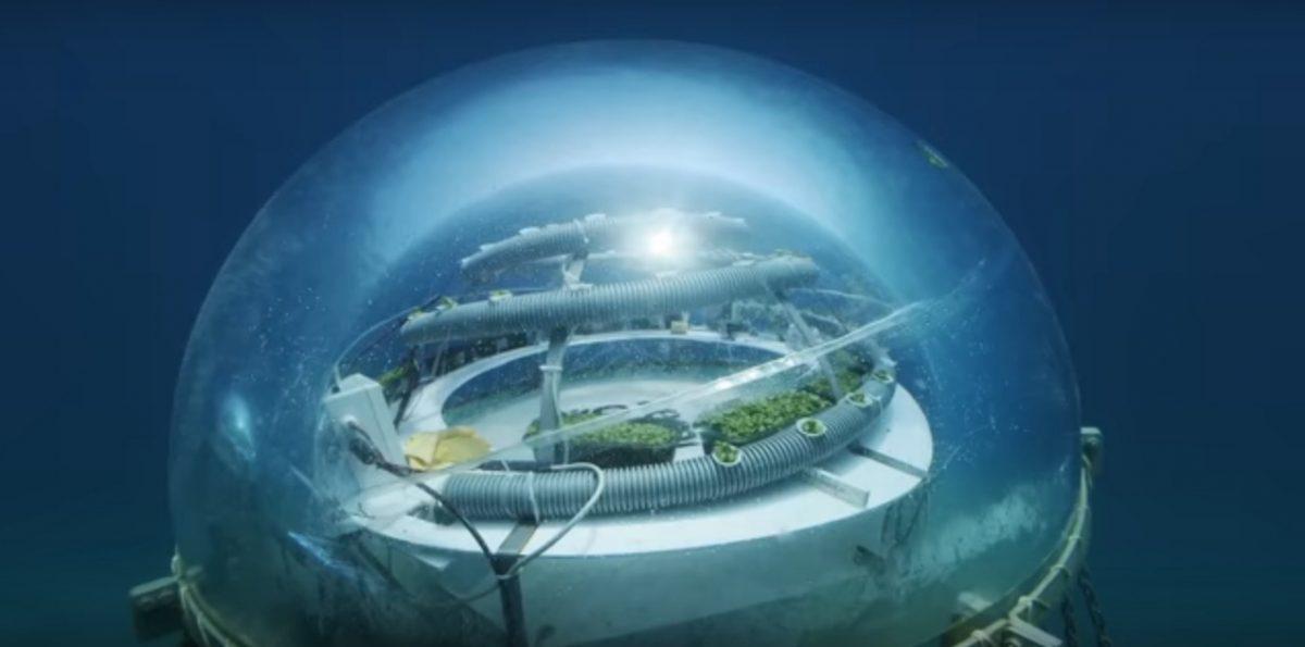 Farma 8 metara ispod mora – video